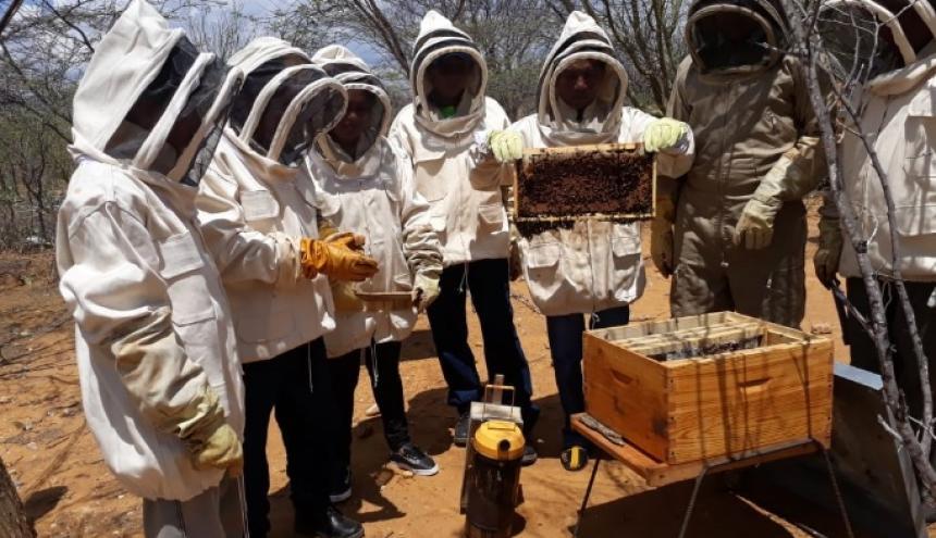 En la granja de la Fundación Cerrejón se crían las abejas, no las exterminan.