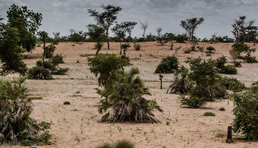 """Según el Gobierno, """"la reserva conservará la misma superficie de 96.560 km2""""."""