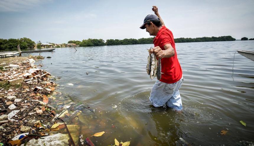 La protección del cuerpo de agua de la Ciénaga de Mallorquín es uno de los retos en educación ambiental.