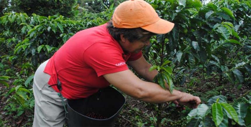 Cocina y paz\' es el nuevo libro de Sabor Barranquilla | El Heraldo