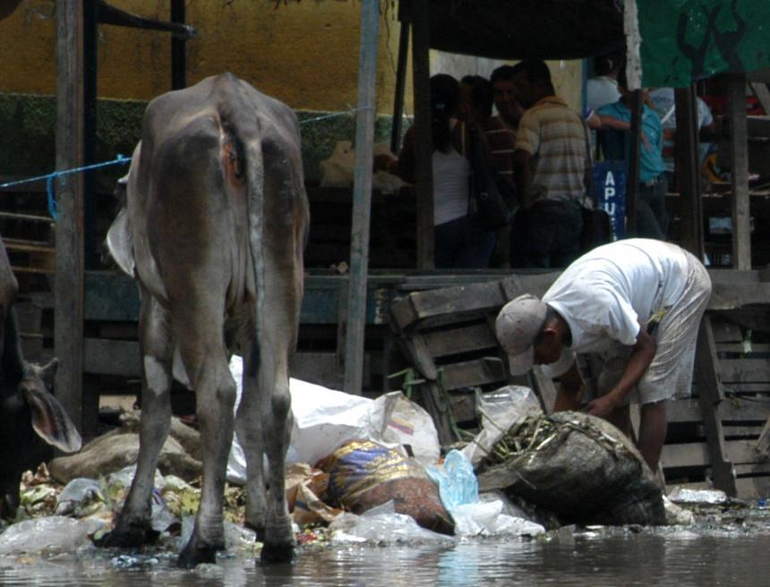 Barranquilla mejoró en índice de pobreza monetaria