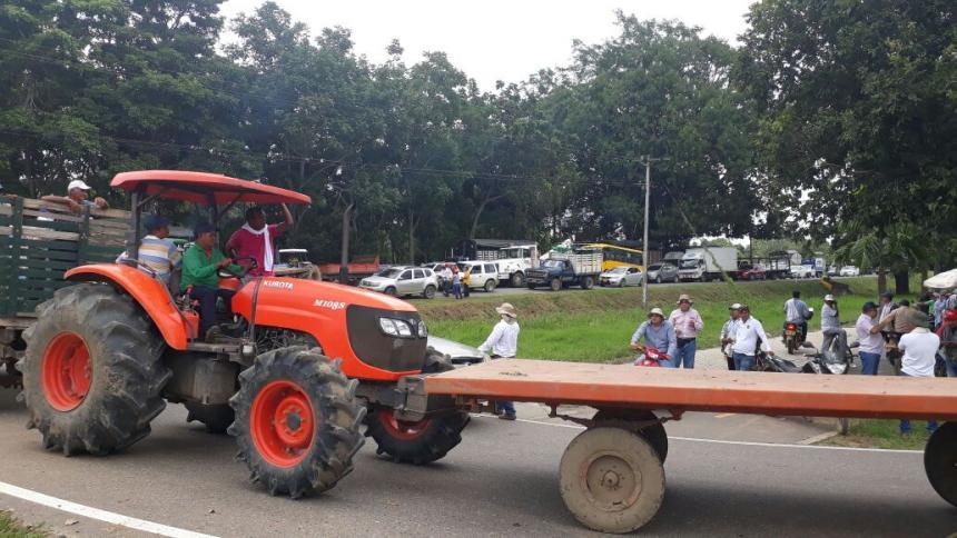 Productores de maíz piden ayuda a Gobierno y critican programa 'Colombia Quiebra'