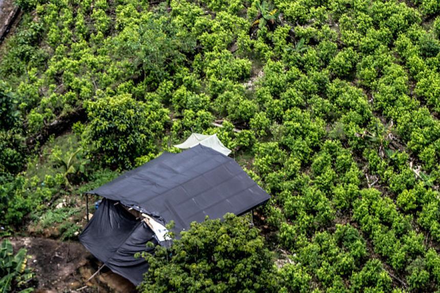 Ataque de disidentes de las FARC deja cuatro muertos en Colombia