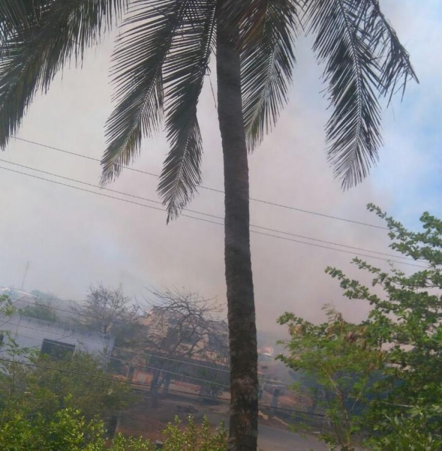 En Morelos, incendios forestales bajaron en marzo