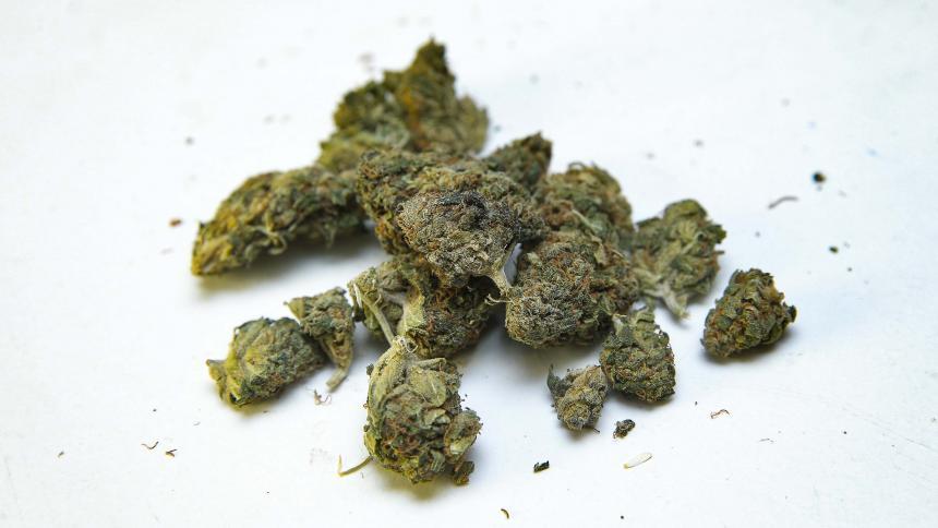 francia-da-un-primer-paso-hacia-la-autorización-del-cannabis-terapeútico
