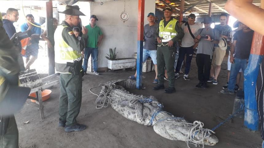 Prensa Policía Metropolitana
