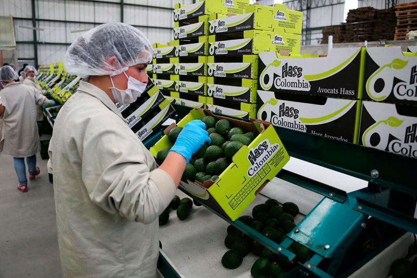 Gobierno Nacional anuncia alivios económicos para empresas ...
