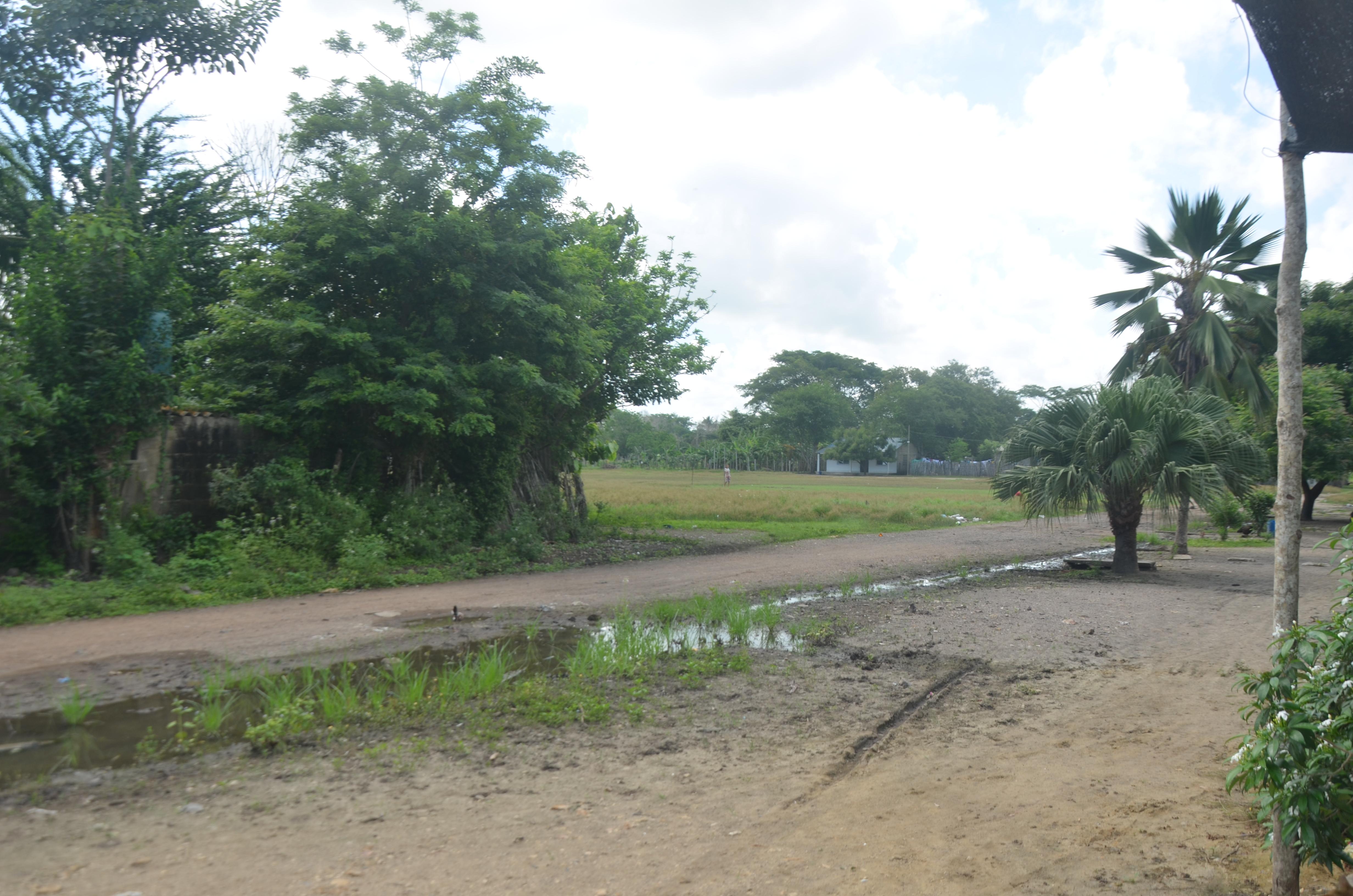 Todas las calles de Puerto Viejo están destapadas. Varias tienen zanjas con aguas servidas.