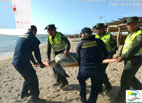 En operativo participaron Policía y Guardacostas.