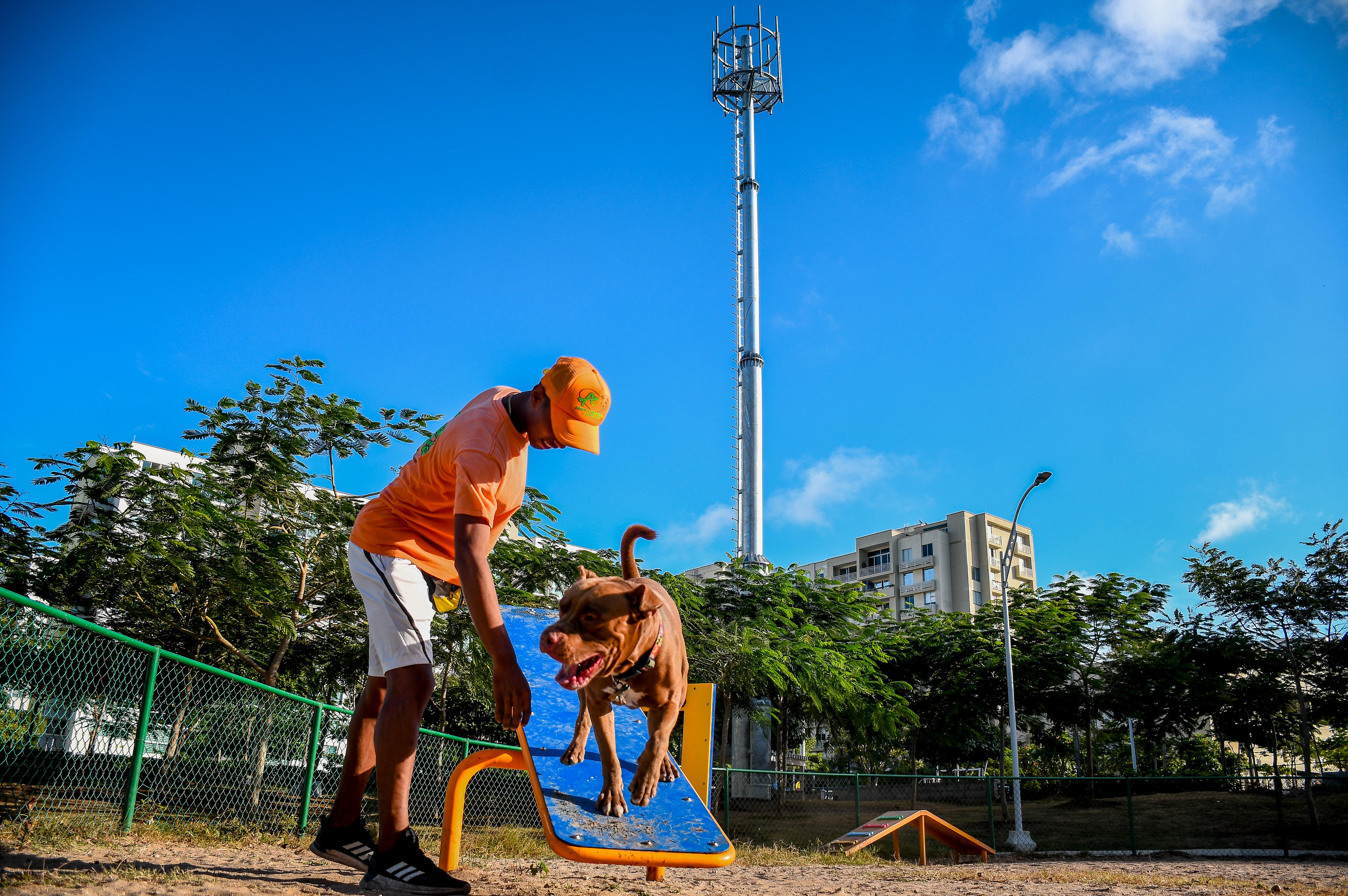 Antena instalada en un parque en el barrio Villa Carolina, en el norte de la ciudad.